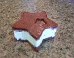 Ice Cream Sandwich - Chocolate Mint Chocolate chip