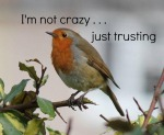 I'm Not Crazy...Just Trusting