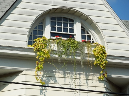 Attic Window Flower Box www.GraceElizabeths.com